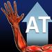 Upper Extremity Injury Evaluation